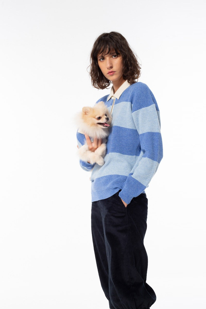 Abbigliamento cachemire cane